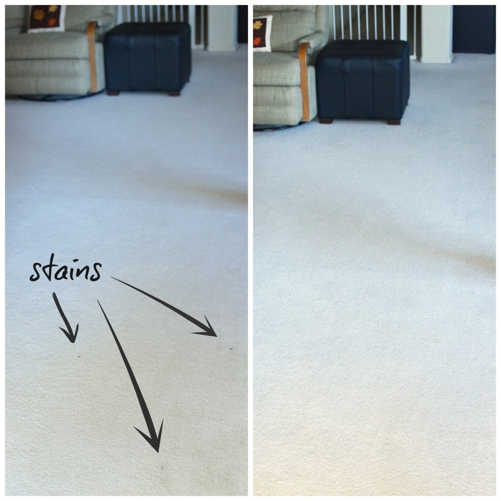Eureka Suction Seal clean carpet- #shop #EurekaPower #cbias