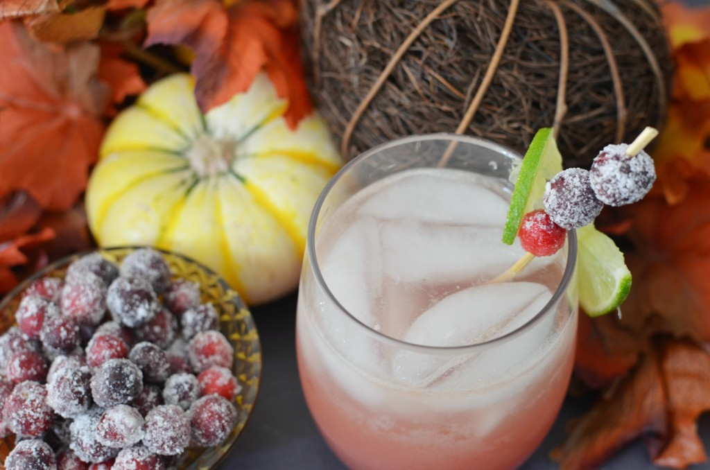 Thanksgiving Punch with Candied Cranberries. #PassTheTEN ad