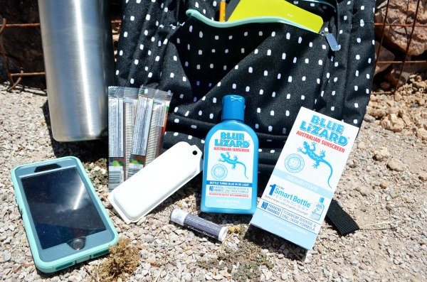 Blue Lizard Sunscreen