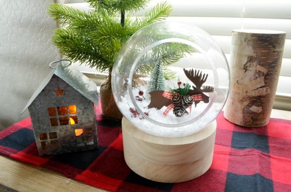 snow globe terrarium